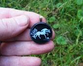 Capall na Alba - Horse of Scotland
