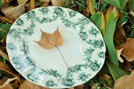 Vintage Samuel ford and company porcelian plates