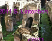 Colosseum - inner space - Rome, Italy - Digital JPEG File Emailed to you