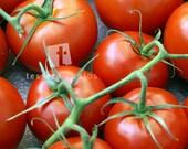 Tomatoes Photo Print
