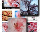 DIGITAL COLLAGE SHEET Cherry Blossom 1 Inch square flower tree japanese Sampler bottlecap images for pendants stickers scrapbooking