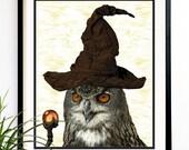 40% OFF CYBER SALE Owl Art print Harry Potter Owl. Harry potter print Movie characters wall decor art print 8x10 (1024)