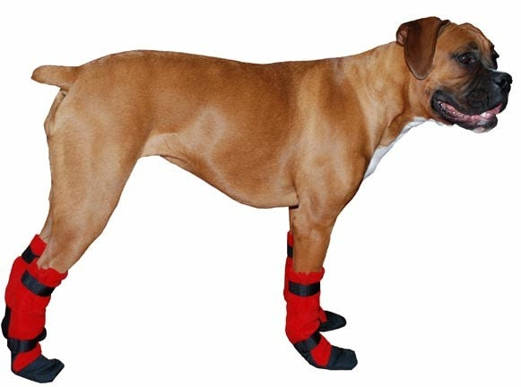 boxer dog booties dog shoes dog booties dog by With where can i buy dog shoes