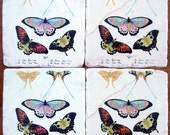 Spring Butterfly, Natural History, Stone Coasters