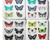 Spring, Colorful Butterfly Coasters, Stone Coasters