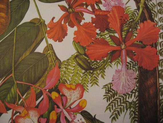 Sale 10 % Vintage  PAIR large botanical BOLD colorful TROPICAL  flower prints 1970
