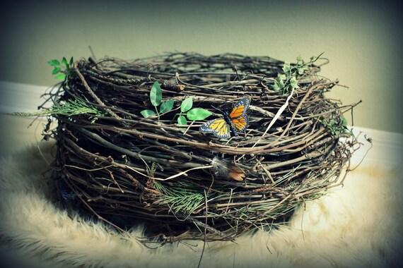 Large Organic Owl/Bird Nest Newborn/Infant Photography Prop