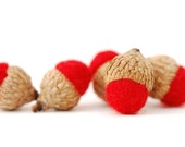 Felted Acorns, red festive decor ecofriendly unisex