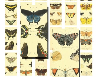 Digital Download Collage Sheet 1x2 Domino Scrapbooking Butterfly Butterflies (63)