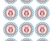 Polka Dot Owl Baby Shower or Birthday Party Favor Tags/ Toppers DIY- Custom Printable