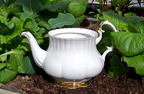 White Bone China Orphaned Teapot