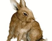 Rabbit - No.1, Fine Art Original watercolor, Pen and Ink