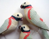 RARE Spun Cotton Parrot With Dresden Wings and Tail, 1900, German Ornament -2 of 3