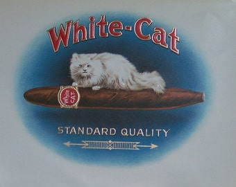 Unused Vintage Cigar Box Label - White Cat - Beautiful