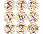 Orange Tiger Stripe with Blue Letters Initial Alphabet Bottlecap Images Orange Tiger Stripe Bottle Cap Images School Bottlecaps & Hairbows
