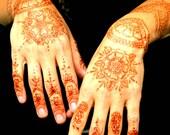 Henna Kit with pre-mixed Henna Cone