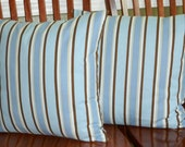 Decorative Designer Throw Pillow Covers - Set of Two 18 Inch  Baby Blue and Brown Stripe