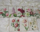 Floral Gift Tags with Seam Binding Set of 8 Assorted