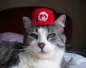 Super Mario Cat Hat