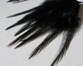 20ct Black Accent Feathers - Two Sizes - For Feather Jewelry and Crafts - Natural Blacks