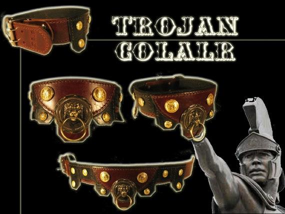 Trojan Collar