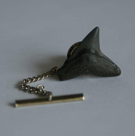 Shark Tooth Tie Tack Fossilized, fossil father, men, wedding, FREE Gift Bag