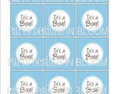 It's A Boy Printable Party Tags