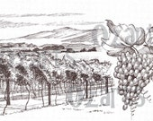Hand drawn - Vineyard & Grapes - digital stamp
