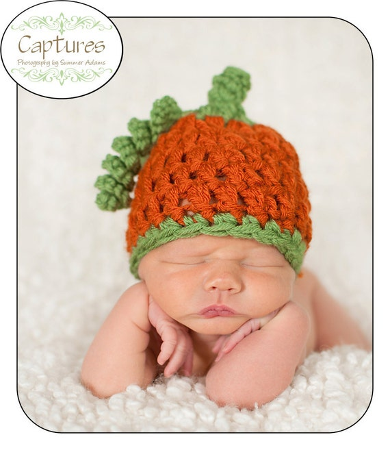 Baby Pumpkin Beanie with Vine and Stem, You Choose Size-Newborn, Infant