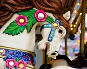 Colored Carousel Steed 5 x7 fine are photograph