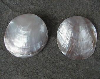 Shell Pierced Earrings Vintage