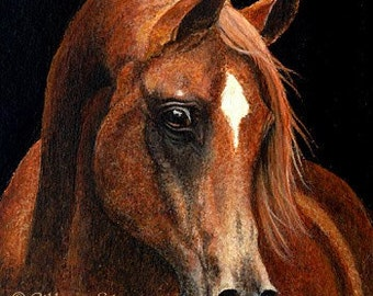 Arab Horse Note Cards, Horse decor, Horses, Ellen Strope