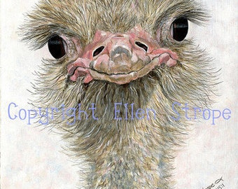 CARD SET, Ostrich, Six note cards, Ostich decor, Bird decor, note cards, Ellen Strope