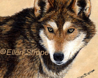 TIMBER WOLF, 6 Note Cards, Fine Art, Wolves, Wolf decor, Ellen Strope