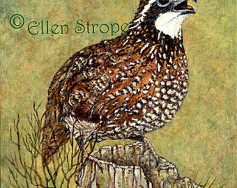 NOTE CARD Birds, Bobwhite, Birds, Blank Cards, Green, Brown, Home Decor, Paper Goods
