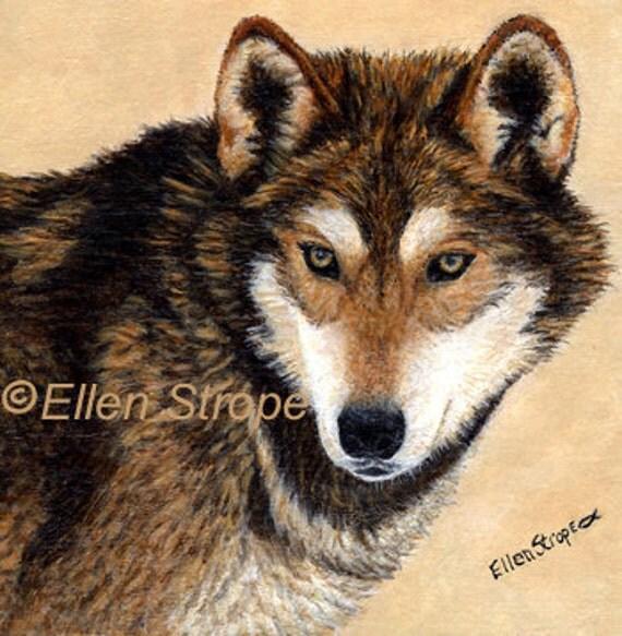 WOLF Giclee Print- Ootaik Alpha Male- Wolves- Wolf Decor