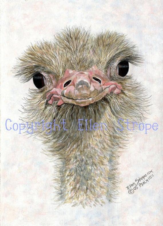 CARD SET, Ostrich, Six note cards, Ostich decor, Bird decor, note cards, Ellen Strope
