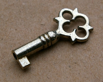 Mini Skeleton Key