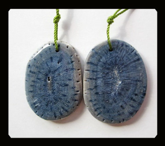 Blue Fossil Coral Earring Beads,34x25x3mm,11.49g