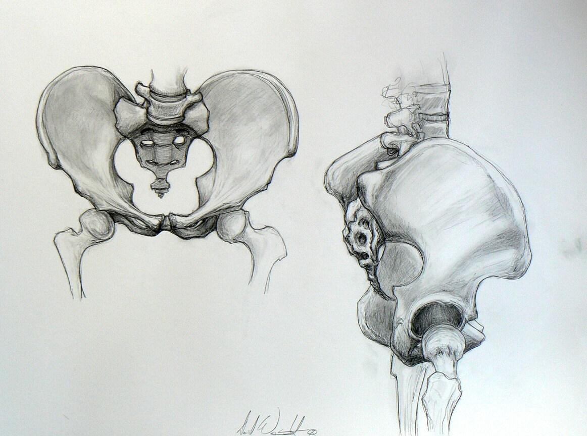 Osteoporosis and Bone Density Tests - webmd.com