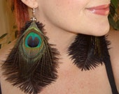 Long Feather Earrings Ostrich and Peacock Feathers Boho Chic
