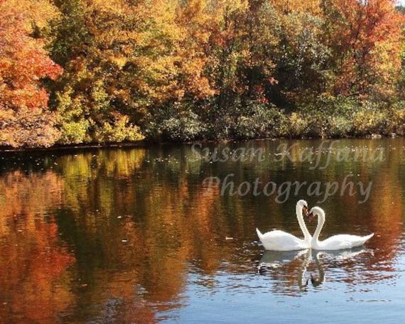 Autumn love ....  Original Fine Art  8x10 Photograph
