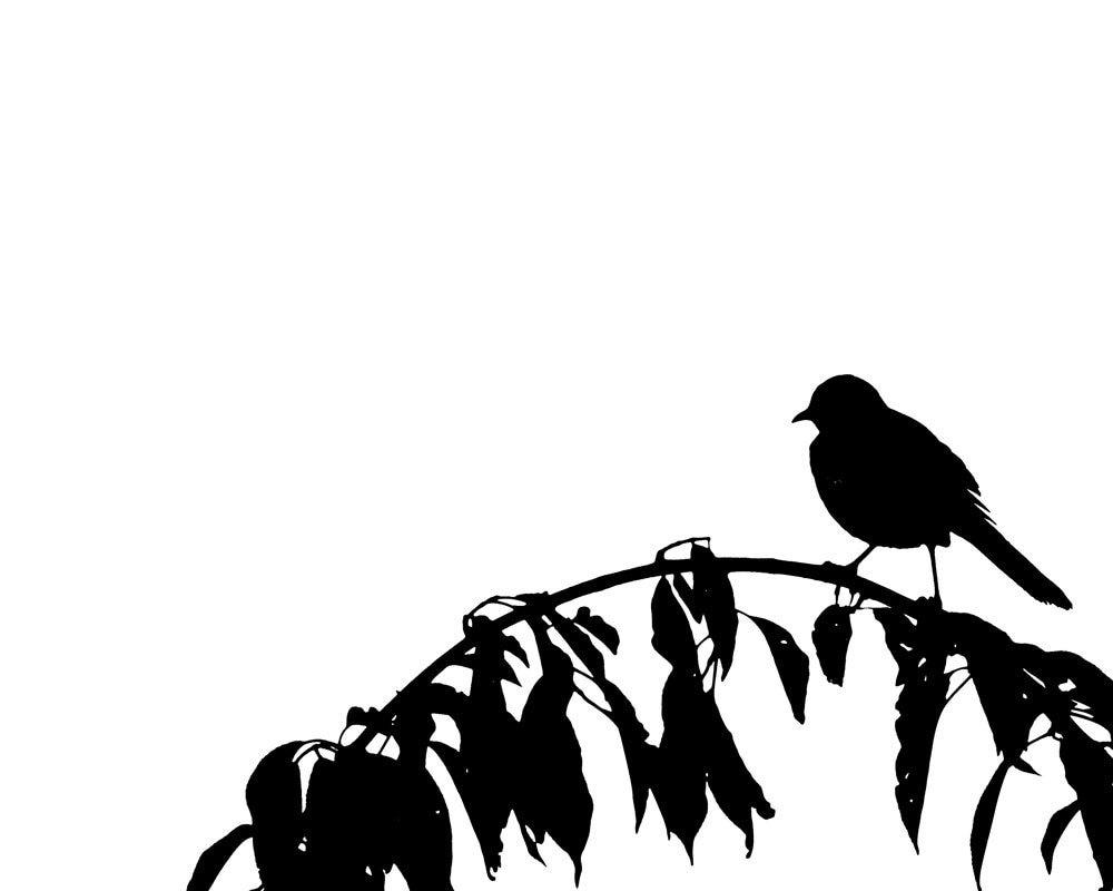black white bird on a branch silhouette minimialist 8 x 10