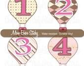 12 Hot Air Balloon Monthly Stickers - Baby Girl - 1st Year Milestones - Onesie Bodysuit & Tshirt