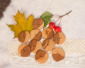 10 Large Wooden Buttons, Apple Tree, 1,75 inch