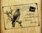 Bluebird and French France Bird Postcard Vintage Digital Image Transfer Download jpeg or png 300 dpi for Pillows Totes Bags Napkins Towels