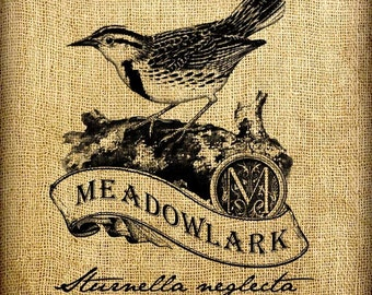 Meadowlark Scroll Monogram Digital Image Transfer Download jpeg or png 300 dpi for Pillows Totes Bags Napkins Towels