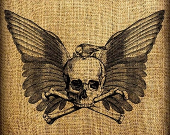 Skull and Bird with Wings Vintage Digital Image Transfer Download 300 dpi for Pillows Totes Bags Napkins Towels