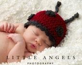 Little Miss Ladybug Crochet Hat Pattern (477)