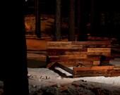 King Reclaimed Redwood and Fir Bed, Steel Siding, Custom